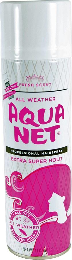 Hair Spray Diversion Safe Front