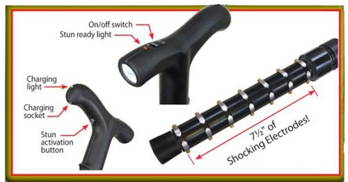 Zap Cane Graphic Parts ForSecuritySake