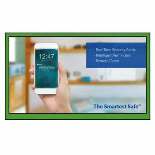 iKeyp-Smart-Medicine-Drug-Privacy-Storage-Safe-Portable-or-Bolt-Installation-App Photo